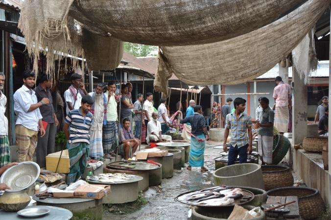 Bangladesh Fish Market