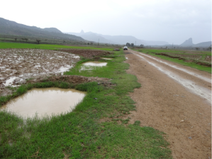 road-side-ponds-northern-ethiopia-2