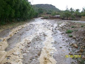 roads-acting-as-drains-in-rainy-period-in-ethiopia